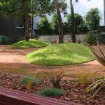 native-gardens